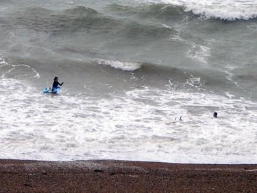 Brave surfer