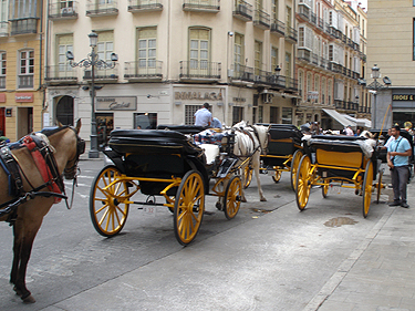 Carriages & horses