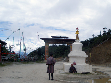 Yutong La