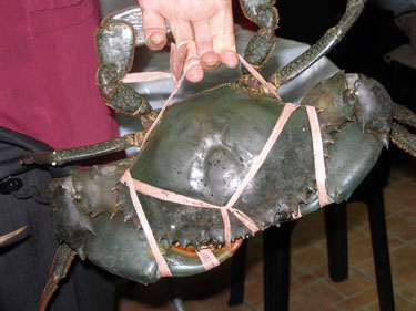 Our crab
