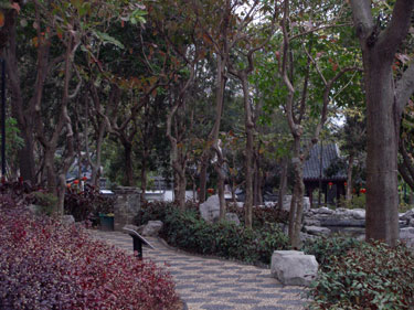 Scenes in Kowloon Walled City Park