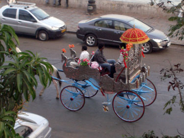 Horese carriage
